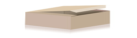 Queuekoffer für Billard und Snooker - 80 cm 2. Wahl